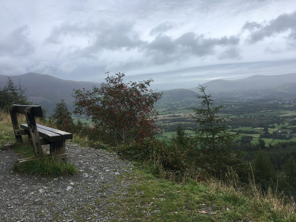 Whinlatter Running view