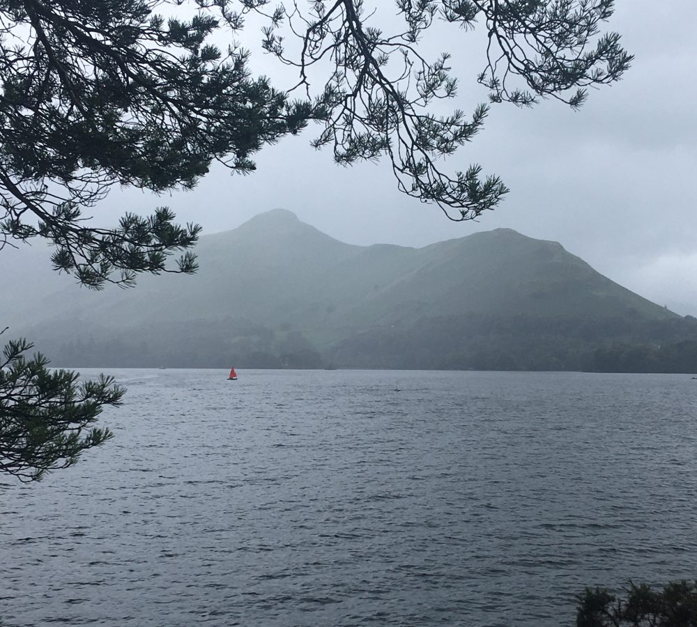 Cat Bells in the rain