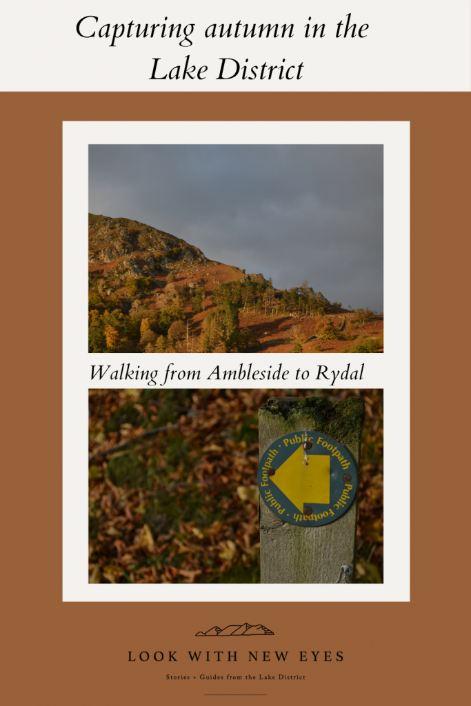 Capturing the Lake District in Autumn walking from Ambleside to Rydal
