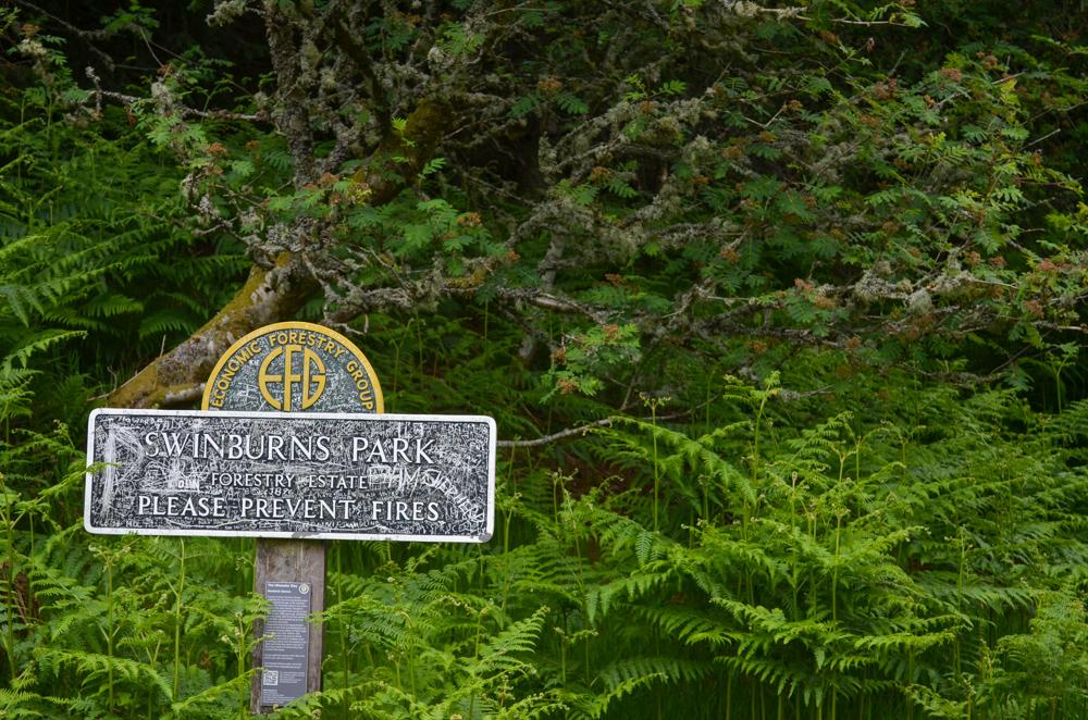 Swinburns Park on the Ullswater Way