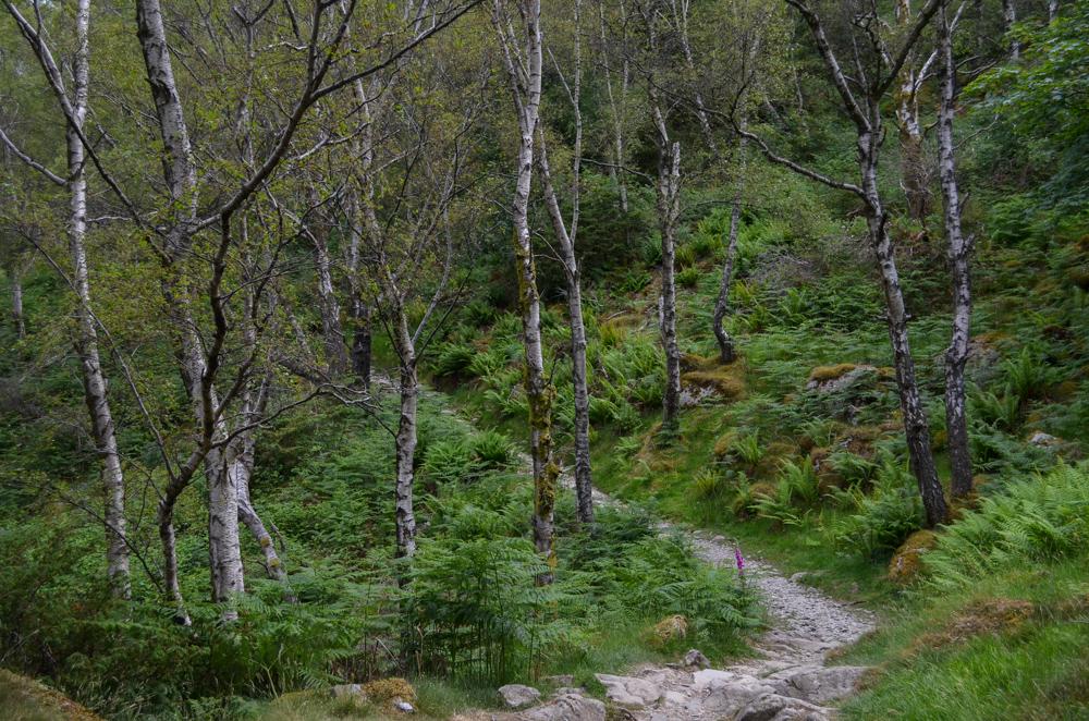 Glenridding to Howtown Ullswater Way